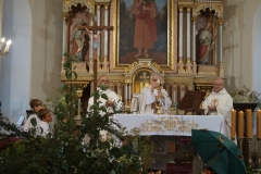 Dzień św. Franciszka z Asyżu